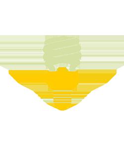 quality-service-lampadina250x295